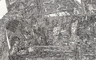 <p>Still Life#2 (Detail), Pen drawing Collage on Paper, 11'' x 14'', 2010</p>