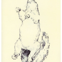 """<p style=""""text-align: center;""""><strong>Squirrel 2</strong></p> <p style=""""text-align: center;"""">8.5'' x 11''</p> <p style=""""text-align: center;"""">""""The Secret Inside""""</p> <p style=""""text-align: center;"""">2011/12</p>"""