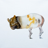 <p>Tapir Liplesslegs, 2011.&nbsp; Watercolor, gouache, and ink on stretched paper, 10 x 10 inches</p>