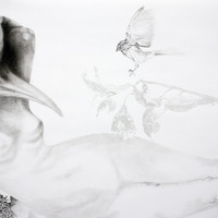 <p>Fuyapasa Landscape 2 : Girly Billy on the Mesa (detail 2), 2011.&nbsp; Graphite on bristol paper,&nbsp;36 x 144 inches</p>
