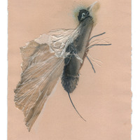 <p>Hummer, 2014.&nbsp; Mixed media and found objects on fabriano paper, 10 x 8 inches</p>