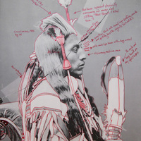 <p>Title: Peelatchiwaaxpáash / Medicine Crow (Raven)</p>