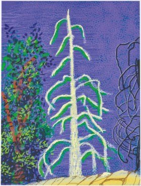 Rsz_2018_cks_15474_0198_000david_hockney_untitled_no_14_from_the_yosemite_suite