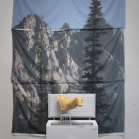 <p><em>I Love the View from the places I Don&rsquo;t. </em></p>